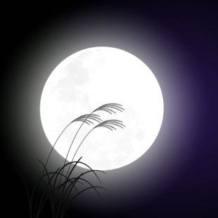 お月見デート